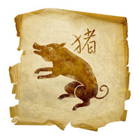 pig-zodiak-sign-year