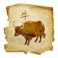 bull-zodiak-sign-year